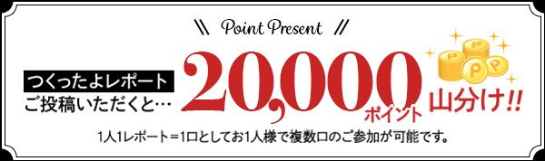 全員が対象!つくったよレポートをご投稿いただくと20,000ポイント山分け!! 1人1レポート=1口としてお1人様で複数口のご参加が可能です。